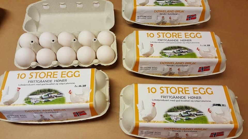 Døskeland Egg Coop Vest