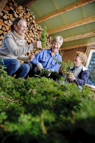 Coop Nordvest - norske oppskrifter - Lokale smakar - tradisjonsmat - lokalmat - norsk mat - matkultur - kortreist mat - norsk matprodusent - tradisjonelle smaksoppleveingar - lokalmatprodukt - lokalmatprodusentar